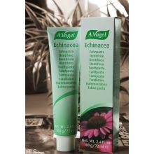 A.Vogel Echinacea Toothpaste Οδοντόπαστα 100γρ