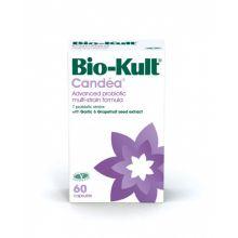 A. Vogel  Bio Kult Candea Συμπλήρωμα Διατροφής για Ενίσχυση της Άμυνας του Οργανισμού - Προστατεύει απο την Candida 60caps